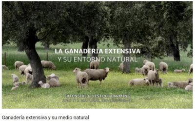 VIDEO SOBRE BENEFICIOS DE LA GANADERIA EXTENSIVA Y EL PASTOREO