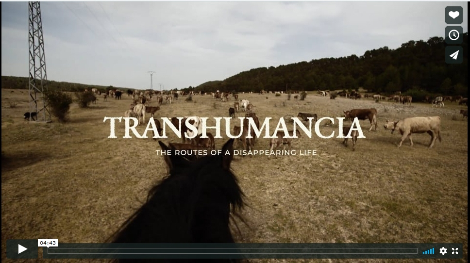 TRASHUMANCIA- THE ROUTES OF A DISAPPEARING LIFE