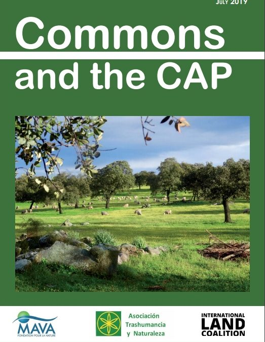COMMONS AND THE CAP